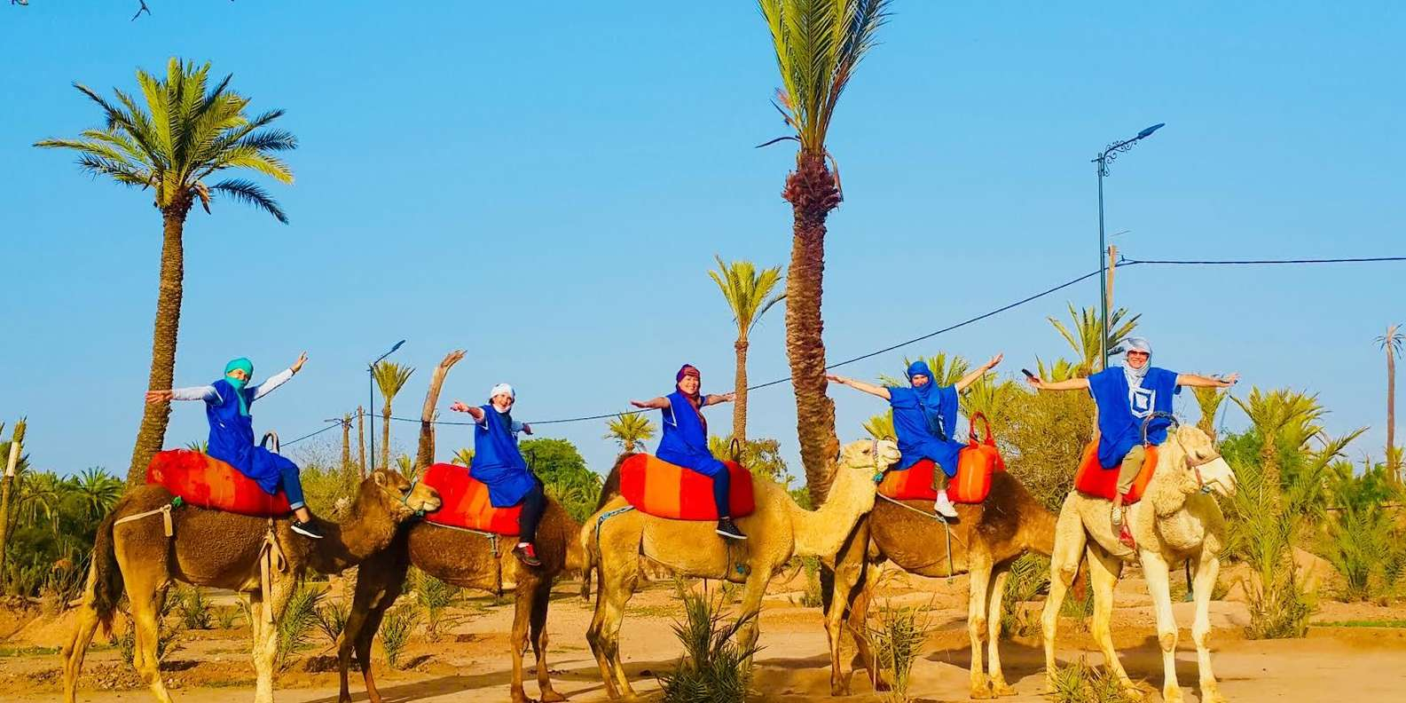 Morocco camel ride tours to explore the palm groves of Marrakech