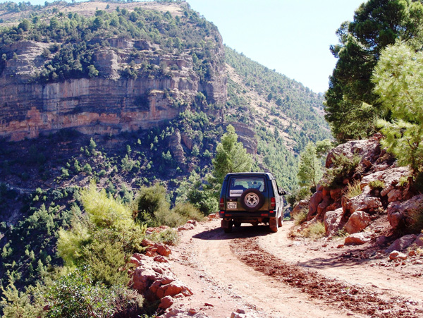jeep safari tour - 12 days/11 nights - from tangier